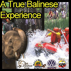 True Balinese Experience