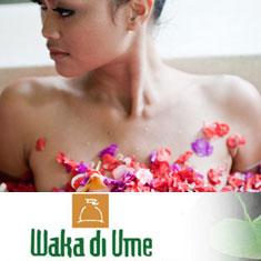 Waka di Ume Resort